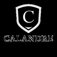 Calandre Automobile.png